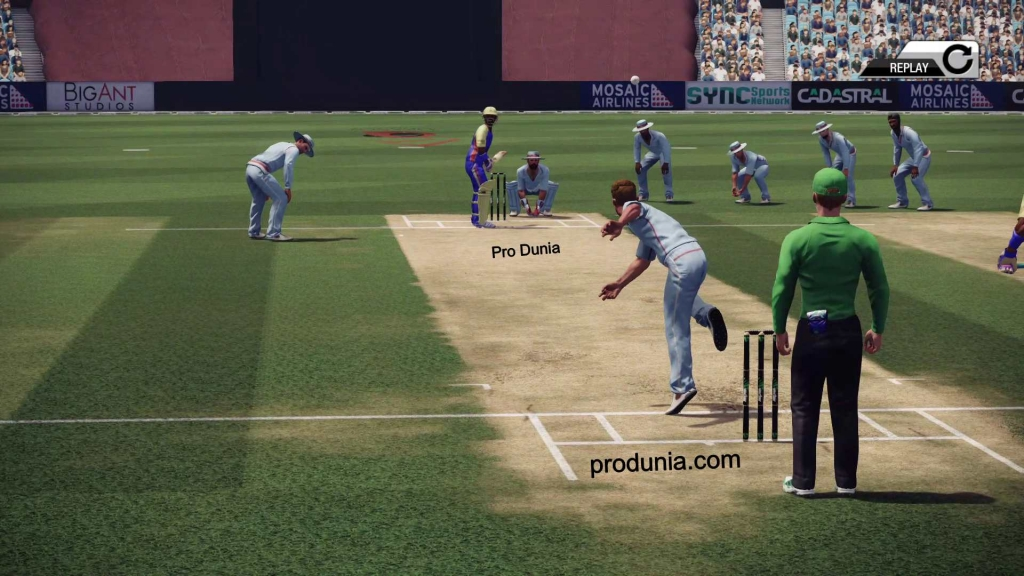 don bradman cricket 14 pc download